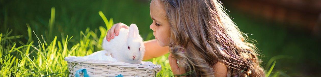 Húsvéti ajánlatok, húsvéti wellness akciók